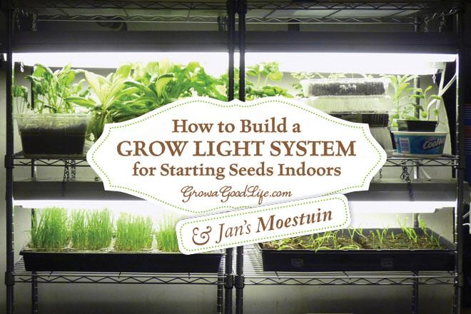 Hoe thuis een systeem met groeilampen maken om planten op te kweken