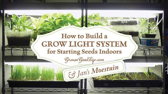 hoe thuis een systeem met groeilampen maken om planten op te kweken jans moestuin
