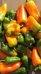 Overdaad aan lekkere snack paprika's