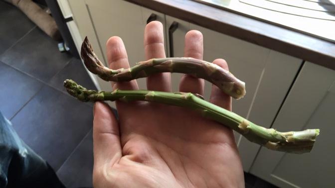 De eerste groene asperges!