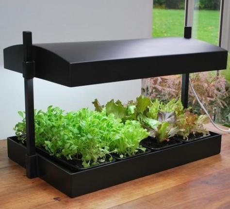 809390-plantensolarium-grow-light-garden-g139